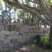 Coral Retaining Wall
